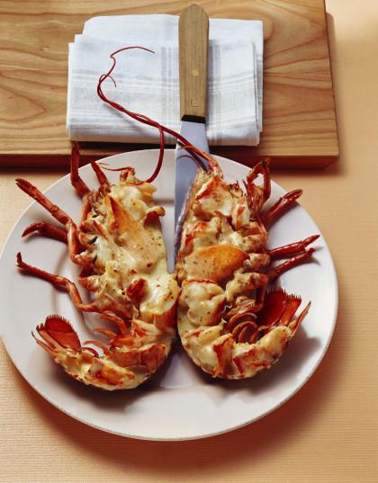 Lobster in Cream Sauce