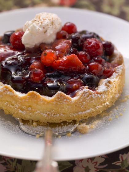 Elegant Berry Tart